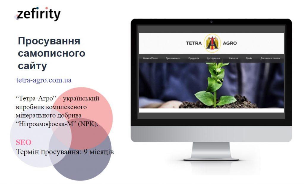 SEO просування самописного сайту